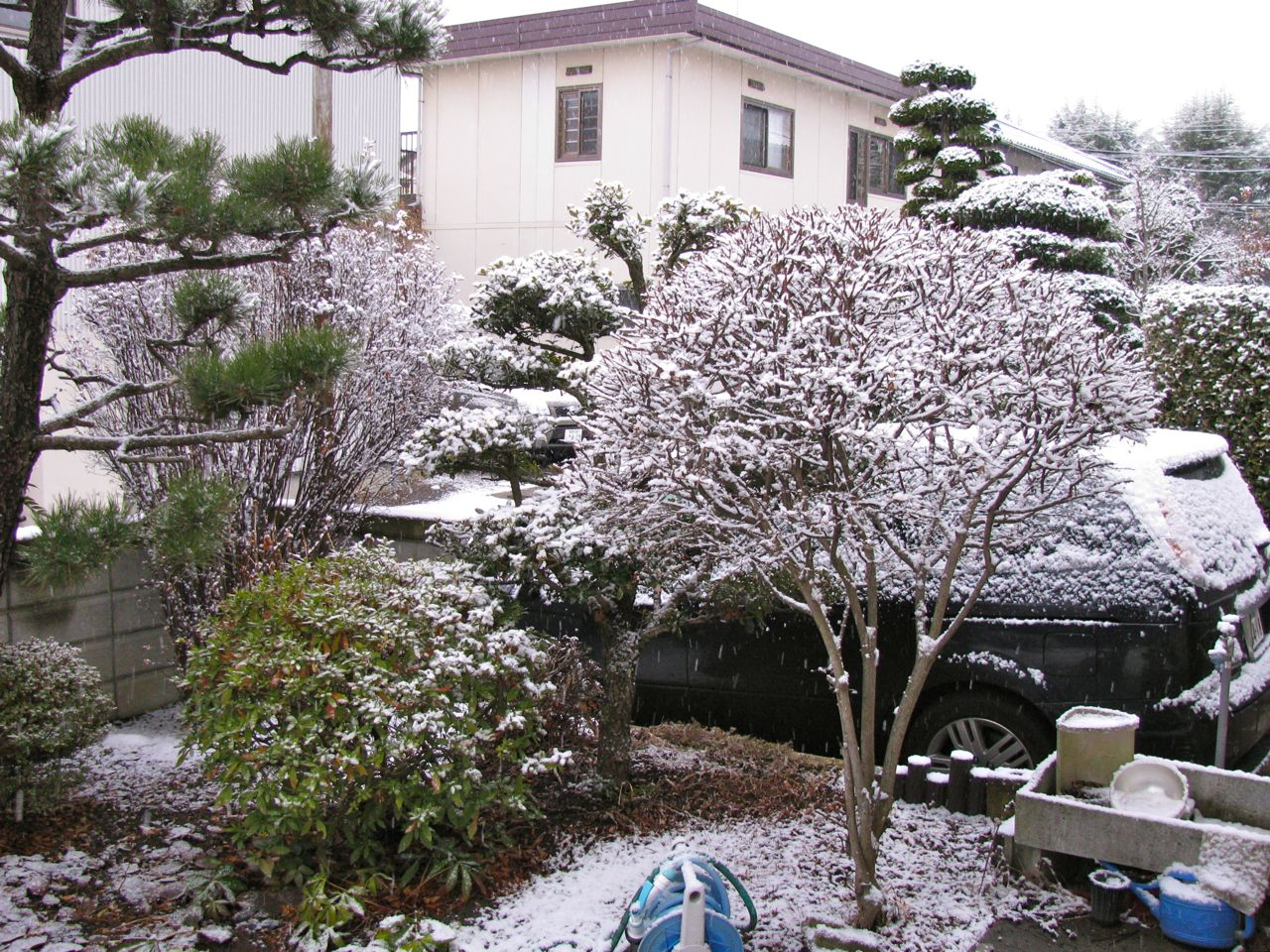 Nagano_120226