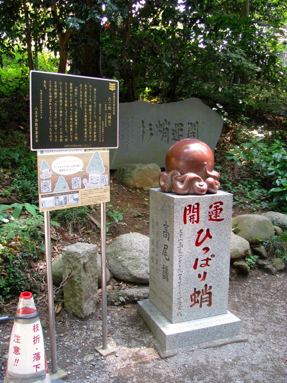 Takaosan1207264