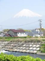 Fujisan09