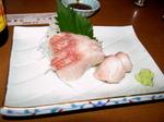 Iwate_kanpachi