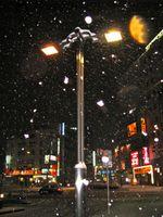 Yamagata09_1